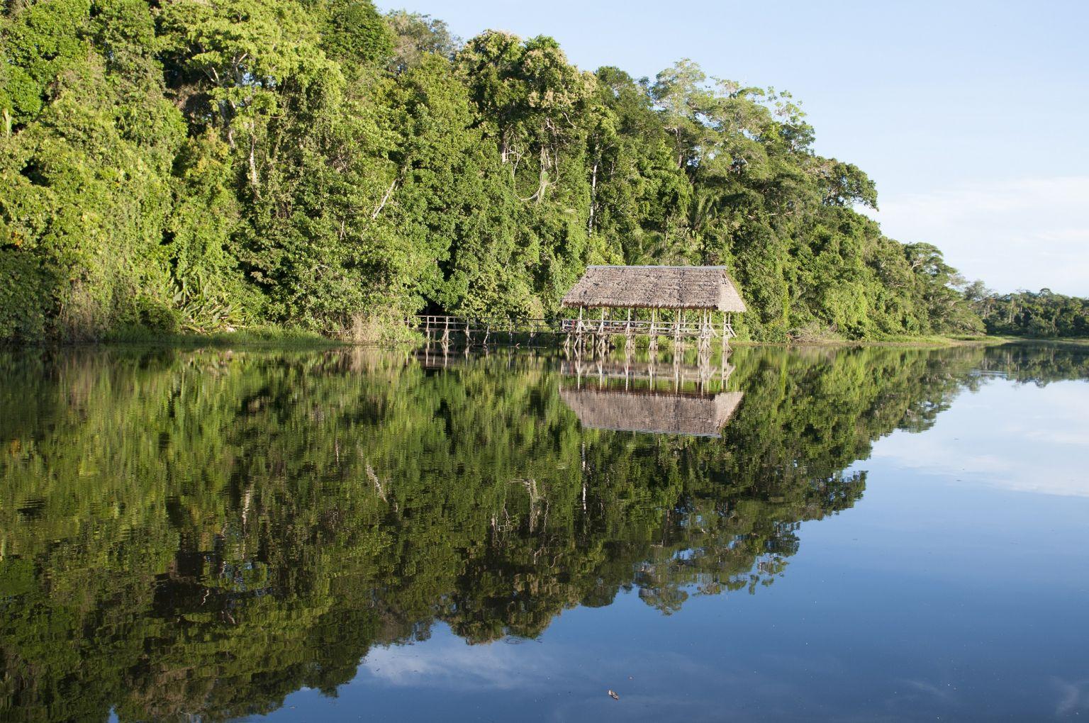 Parque Nacional Cordillera Azul ucayali